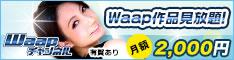 人気インディーズAVメーカーWaapのアダルト動画が見放題!