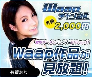 Waapチャンネル