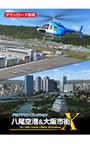 FSアドオンコレクション八尾空港&大阪市街