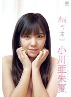 小川亜朱夏:桃の木 VOL.5(動画)