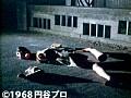 第16話 怪奇大作戦 サンプル画像 No.3