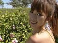 Perfume 大城美和 サンプル画像 No.3