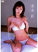 Tropical Snow 水木彩