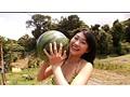 Watermelon スイカがいっぱい。 原幹恵 サンプル画像 No.1