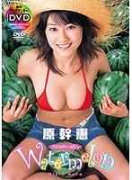 Watermelon スイカがいっぱい。 原幹恵
