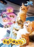 【VR】お家で猫カフェ
