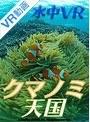 【VR】クマノミ天国