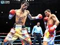 ボクシング WBA世界フライ級タイトルマッチ「亀田大毅(亀田ジム)×デンカオセーン・カオウィチット(タイ)」(2009)