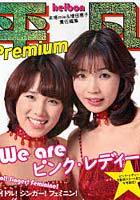 We areピンク・レディー 平凡Premium