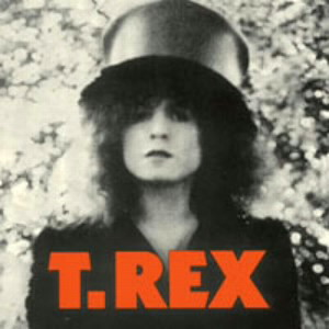 T・レックス/ザ・スライダー(紙ジャケット仕様)