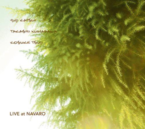 勝井祐二+沼澤尚+辻コースケ/LIVE at NAVARO