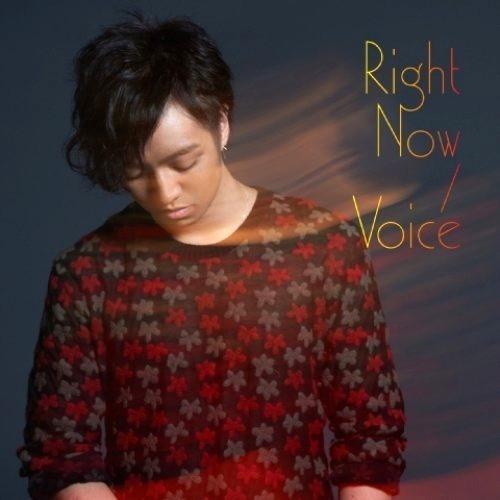 三浦大知/Right Now/Voice