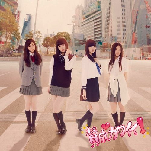 SKE48/賛成カワイイ!(初回限定盤A)(DVD付)