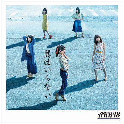 AKB48/翼はいらない(DVD付)