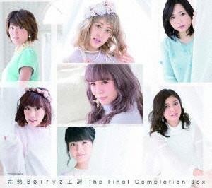 Berryz工房/完熟Berryz工房 The Final Completion Box(初回生産限定盤B)(2DVD付)