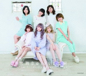 Berryz工房/完熟Berryz工房 The Final Completion Box