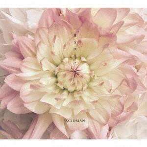 ACIDMAN/愛を両手に(初回限定盤)(DVD付)