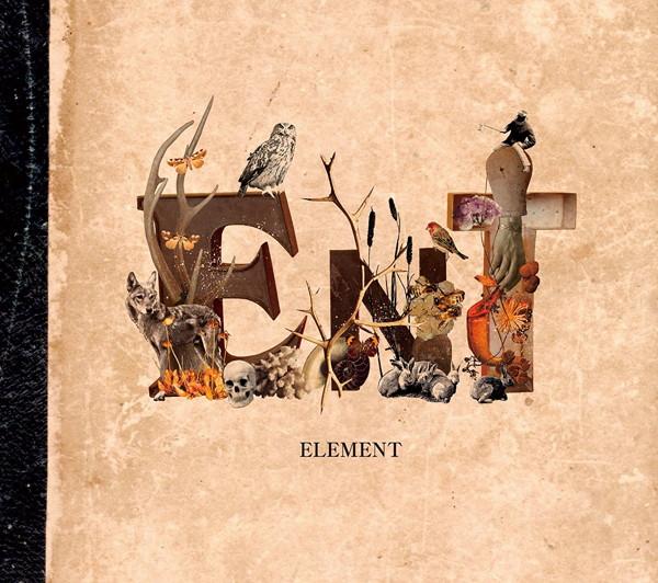 ent/ELEMENT(初回限定盤)