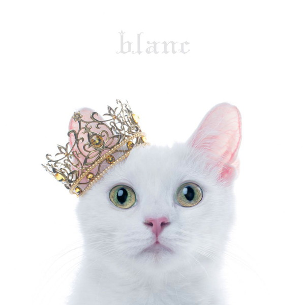 Aimer/BEST SELECTION 'blanc'