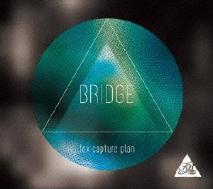 fox capture plan/BRIDGE