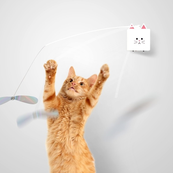 CatchCats(本体)+BowSensorセット