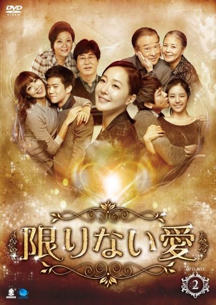 限りない愛 DVD-BOX2