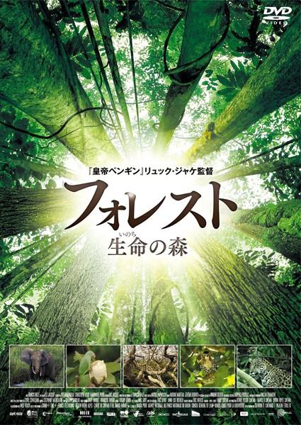 フォレスト 生命の森