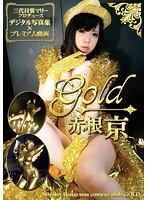 CD-ROM写真集「赤根京 Gold」