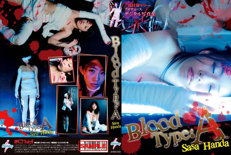 CD-ROM写真集「Blood Type A 範田紗々」