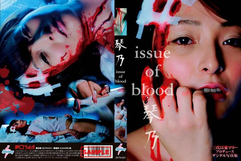 CD-ROM写真集「issue of blood 琴乃」