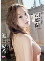 胡蝶蘭/池田夏希