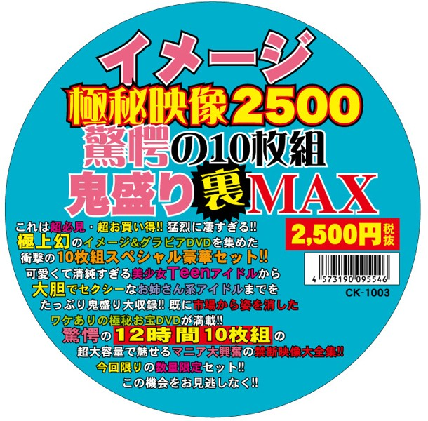 イメージ極秘映像2500 驚愕の10枚組裏盛りMAX