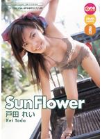 Sun Flower/戸田れい