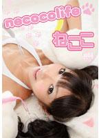 necoco life/ねここ 【DVD-R版】