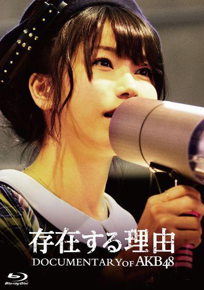 存在する理由 DOCUMENTARY of AKB48 スペシャル・エディション (ブルーレイディスク)