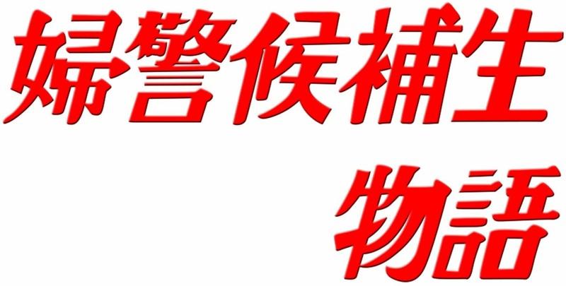 石立鉄男生誕70周年記念企画第5弾 昭和の名作ライブラリー 第11集 婦警候補生物語 DVD-BOX デジタルリマスター版