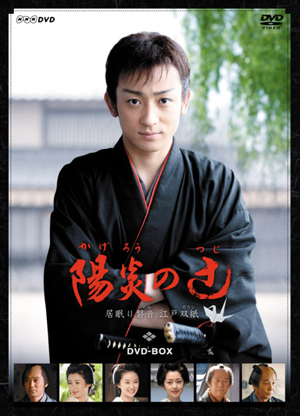 陽炎の辻 〜居眠り磐音 江戸双紙〜 DVD-BOX