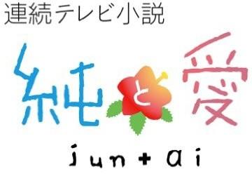 連続テレビ小説 純と愛 総集編 (ブルーレイディスク)
