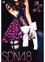 誘惑のガーター/SDN48