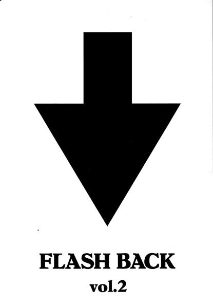 FLASH BACK Vol.2/ザ・ハイロウズ(期間限定)