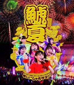 チームしゃちほこサマーフェスティバル2013〜略して'しゃちサマ♪'/チームしゃちほこ (ブルーレイディスク)
