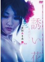 多田あさみ 誘い花 〜映画「赤×ピンク」より〜