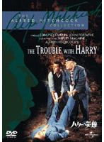 ハリーの災難 (初回限定生産)