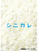 シニカレ 完全版 4