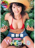 Watermelon スイカがいっぱい。/原幹恵