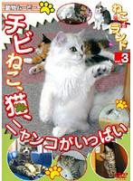 動物ムービー DVDシリーズ ねこ(猫)ざ ランド 3(チビねこ、猫、ニャンコがいっぱい)