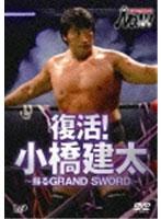 PRO-WRESTLING NOAH 復活!小橋建太~蘇るGRAND SWORD~ 格闘技