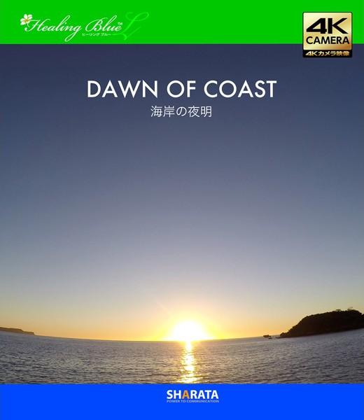 日の出が拝める4Kカメラ映像【Healing Blue LヒーリングブルーL】日の出(海岸編)〈動画約40分〉 (ブルーレイディスク)