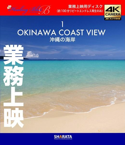 業務上映用4Kカメラ映像【Healing Blue BヒーリングブルーB】沖縄の海岸-1〈動画約100分〉 (ブルーレイディスク)