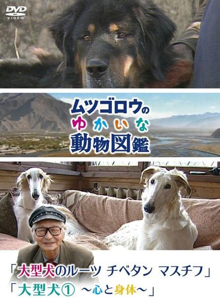 『ムツゴロウのゆかいな動物図鑑』シリーズ 「大型犬のルーツ チベタンマスチフ」「大型犬(1)〜心と身体〜」